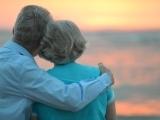 Elder Law – The Basics