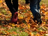 Fall/Winter Rambles for Seniors and other Free Spirits