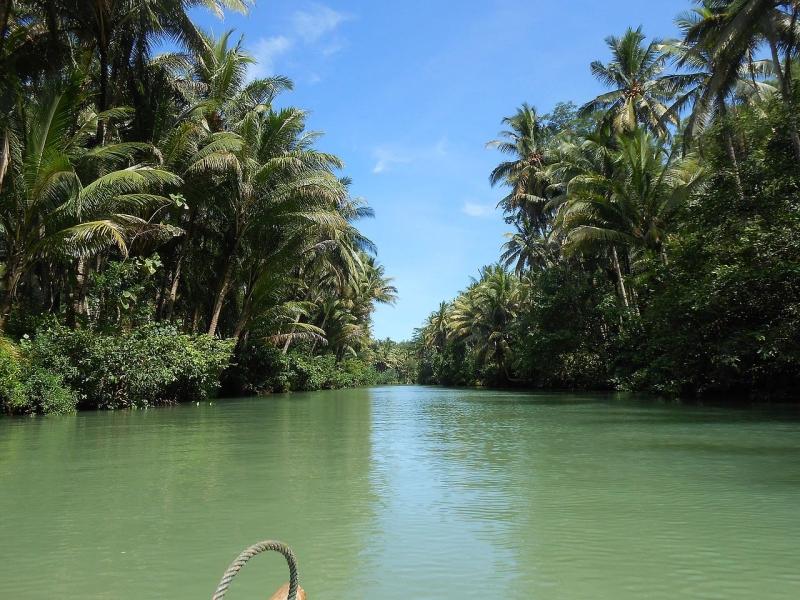 Original source: https://upload.wikimedia.org/wikipedia/commons/thumb/5/5e/Amazon_River_aka_Maron_River_in_Pacitan_%28March_2014%29_-_panoramio.jpg/1280px-Amazon_River_aka_Maron_River_in_Pacitan_%28March_2014%29_-_panoramio.jpg