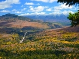 Virtual Class - Meditating on Nature's Wisdom