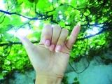 Beginner American Sign Language