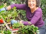 Adaptive Gardening - Watertown
