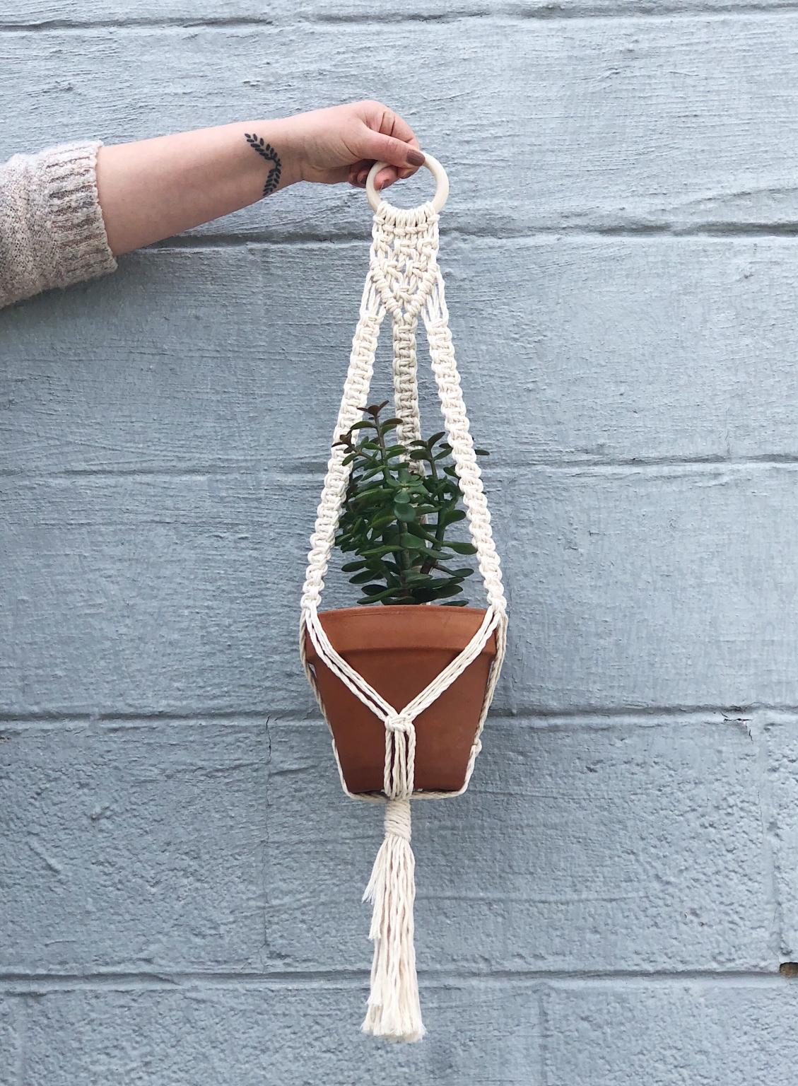 Design Your Own Plant Hanger