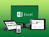 Microsoft Excel 2016 - Basics