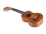 The Ukulele Journey Continues!  Beyong Beginners