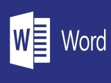 Microsoft Word Boot Camp