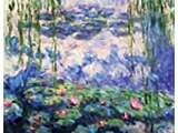 Painting the Classics - Water Lilies