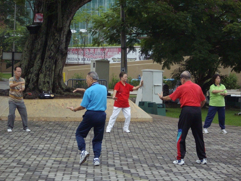 Original source: https://upload.wikimedia.org/wikipedia/commons/thumb/e/e9/%27TAI-CHI%27_exercises_performed_early_mornings_in_Malacca%2825-10-07_Thursday%29.JPG/1280px-%27TAI-CHI%27_exercises_performed_early_mornings_in_Malacca%2825-10-07_Thursday%29.JPG