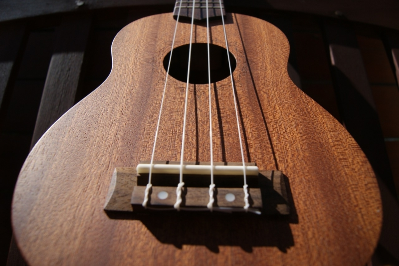 Original source: http://takelessons.com/blog/wp-content/uploads/2015/09/ukulele-516502_1280.jpg