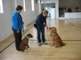 Original source: http://dogmagz.com/wp-content/uploads/2015/03/Hand-Signals-for-Dog-Obedience-Training.jpg