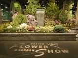 Boston Flower Show - Spring 2018