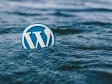 Wordpress Certificate: 1 Class