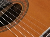 Classical and Flamenco Guitar an Introduction