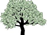 Family Asset Maximization Plan