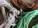 Invasive Color: Using Invasive Species as Natural Dyes