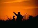 Hunter Safety/Online