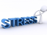 Certificate in Stress Management (Spring 2018)