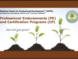 NCPD: 2-SA21-4e-Noeticus Integrative Gestalt Therapy-Practice Endorsement™ (NIGT-PE; 45.0 Contact Hours)