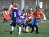 Boys & Girls Soccer Camp - Grades 3-8