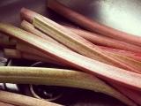 Preserving Rhubarb