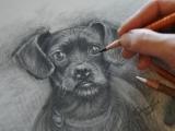 Drawing Basics (Online)