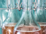 How to Ferment (almost) Everything (Drinks)!