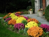 Fall Gardening: Putting the Garden to Bed - Torrington