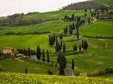 Wine Tour of Tuscany