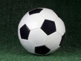 Indoor Co-Ed Soccer Y5-6th