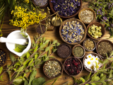 Herbs & Lifestyle for Stress + Anxiety
