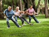 Tai Chi/Qigong for Balance Enhancement – Level 2