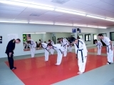 Tae Kwon Do for Adults Fall