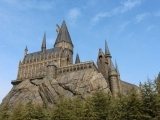 Wizard's School: Herbology and the Care of Magical Creatures Camp