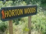 Nature Walk – Horton Woods