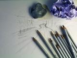 "Beginner ""Nature Photo""Drawing"