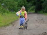 Basics of Intuitive Animal Communication - Watertown