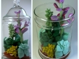 Live Terrarium, How to Make