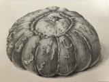 Botanical Drawing: Fruit & Vegetables, Inside Out