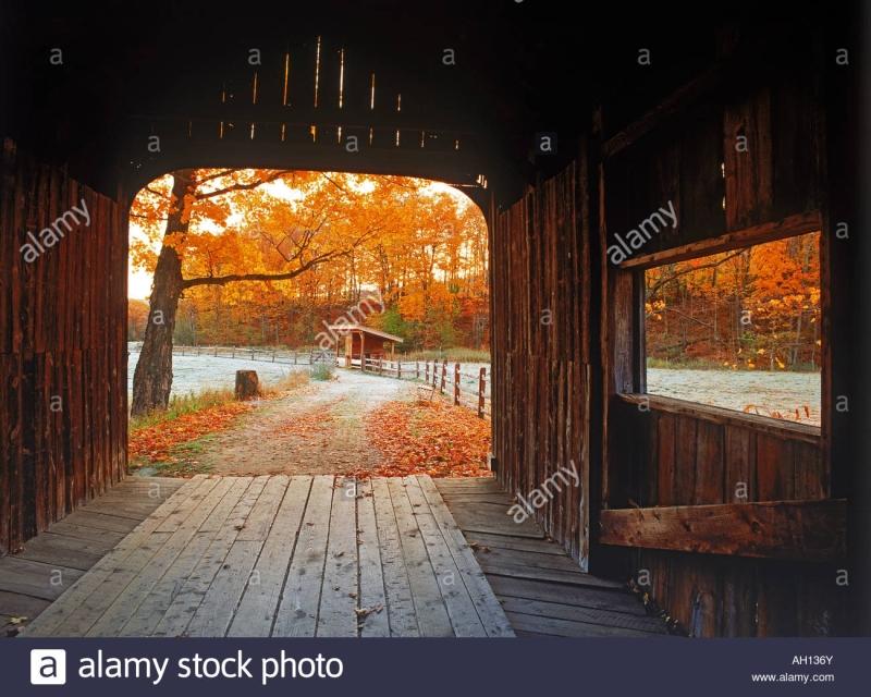 Original source: https://c8.alamy.com/comp/AH136Y/old-covered-bridge-amid-fall-foliage-near-grafton-vermont-in-new-england-AH136Y.jpg