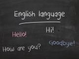 ESL: Practice Real-life Conversation Skills (WPG490-66)