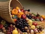 202F19 Fall Harvest Bounty