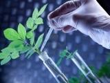 Basic Soils & Plant Nutrition (Fall 2017)