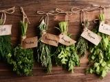 Create Your Herb Garden