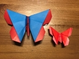 Advanced Origami: Origami Butterflies - Plymouth