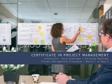 Project Management Processes: Part of the Certificate in Project Management