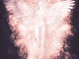 Angels, Spirit Guides, and You
