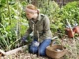 Grow Your Own Organic Garden Messalonskee W18