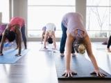Whole Body Yoga Tuesday - II