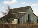 A Field Course in Old Barns
