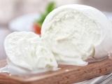 Mozzarella and Ricotta Cheese-Session I
